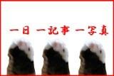 oneoneone_red_s-5a59e.jpg